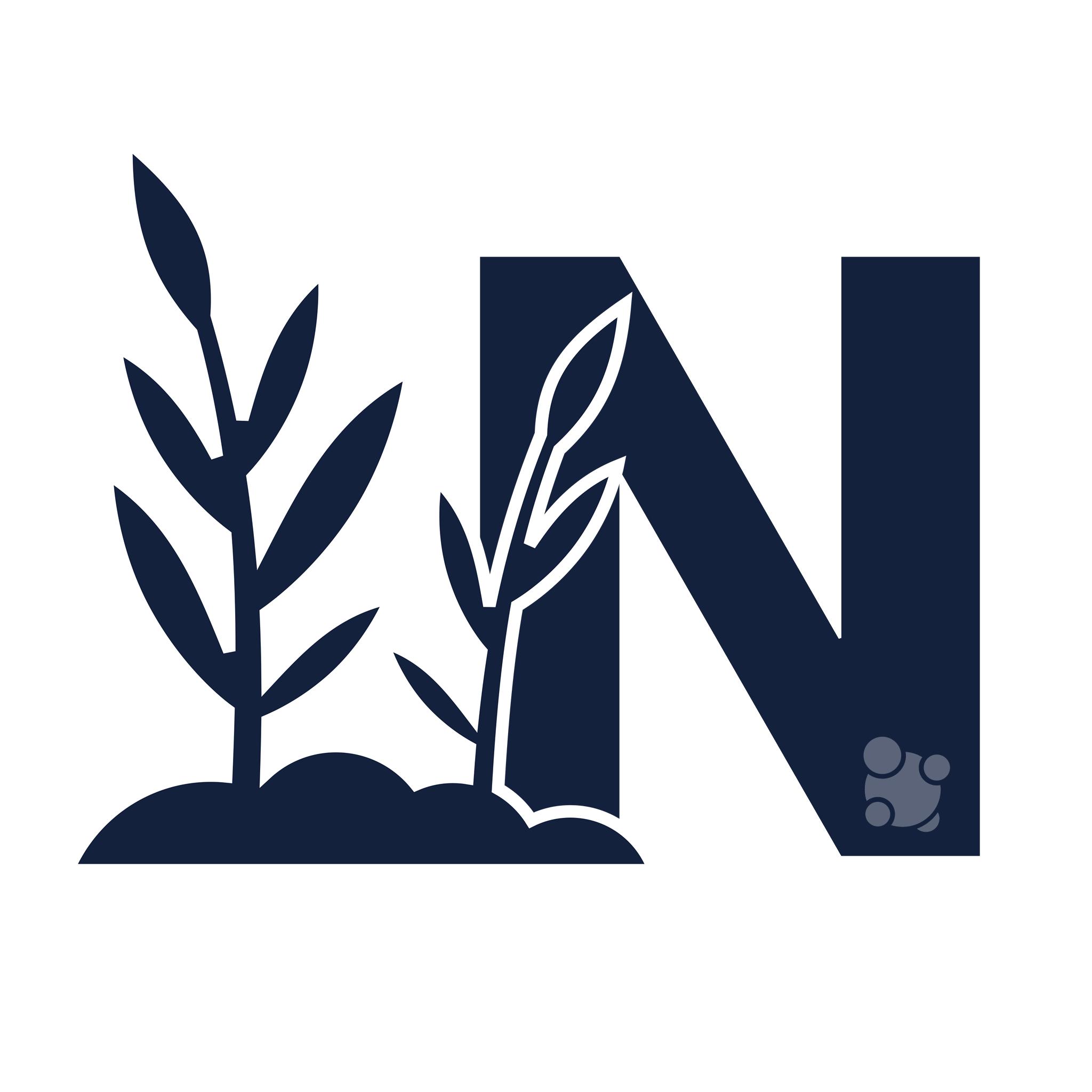 Papel del Nitrógeno en las Plantas