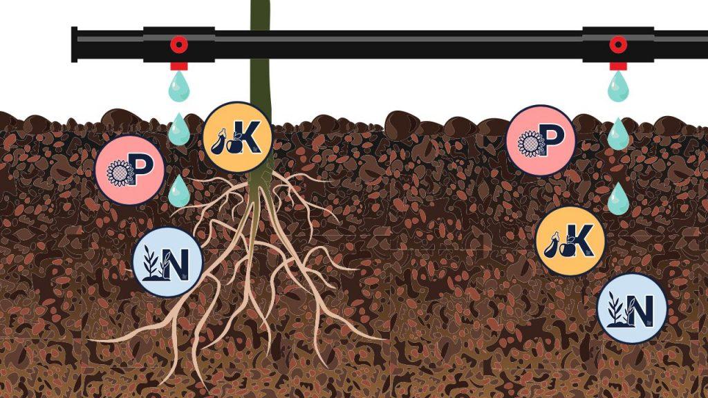 Valor Nutricional de las Aguas de Riego