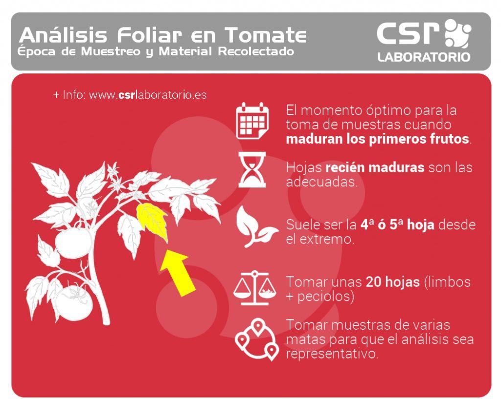 Ficha de Mustreo de Hoja Tomatera