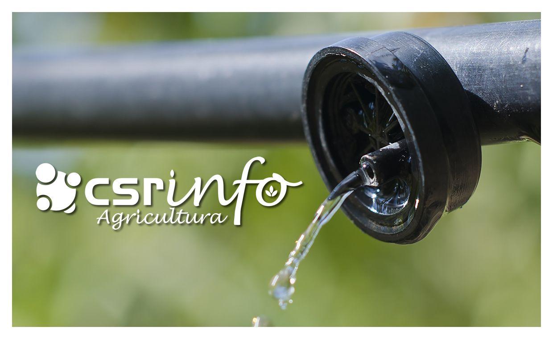 CSR Info Agricultura 2020 | 2 | Verano