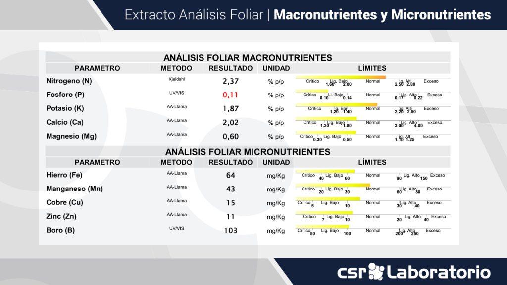 Extracto de Análisis Foliar Macronutrientes y Micronutrientes