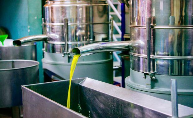 Almazara extrayendo aceite de oliva