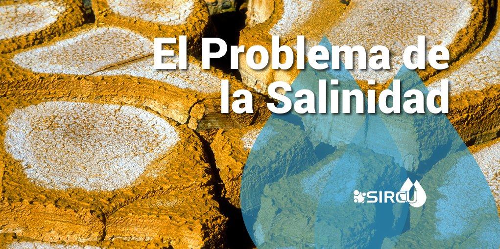 Problemas de Salinidad en el agua de Riego